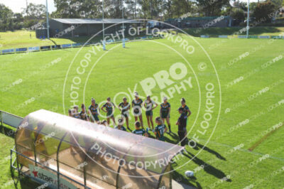 Ladies League Tag CCDRL Round 5 – Wyong Roos v Terrigal Sharks