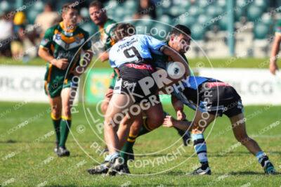Reserve Grade CCDRL Round 5 – Wyong Roos v Terrigal Sharks